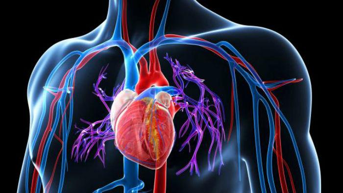 pierderea în greutate și simptomele hipertensiunii)